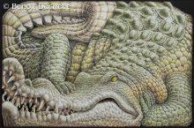 Crocodile coincé – Acrylique sur toile – 97 x 146 cm