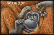Orang-outan coincé – Acrylique sur toile – 97 x 146 cm
