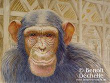 Guenon sous les Halles richeloises - Acrylique sur toile - 46 x 61 cm