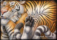 Tigre coincé - Acrylique sur toile - 81 x 116 cm